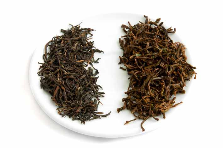 Ceylon Kenilworth - suchý a mokrý list