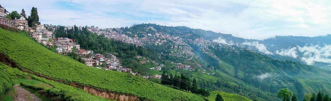 Město Darjeeling obklopené čajovými zahradami