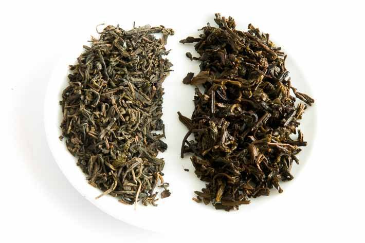 Čaj 250letého muže - suchý a mokrý list