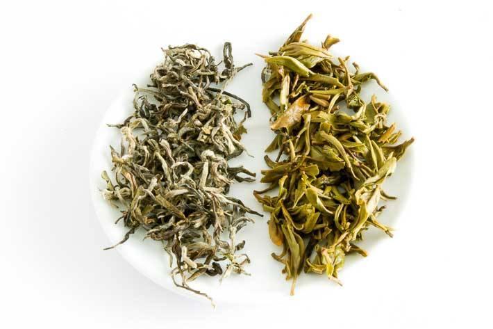 Bílý čaj z nepálské zahrady Himalayan Shangri-la - suchý a mokrý list